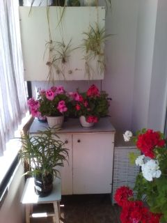 Перші кухонні меблі_4-зменш